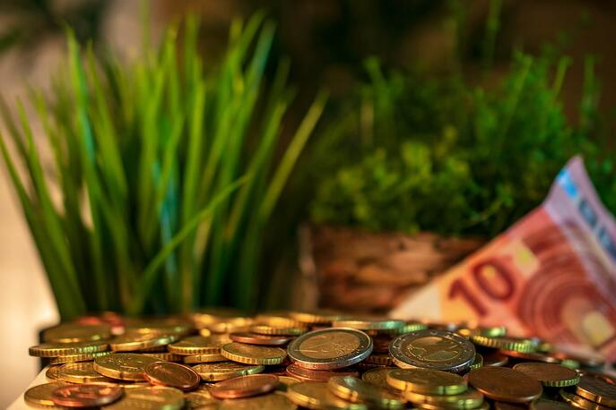 argent-pieces-billets-nature-plantes