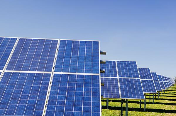 ferme-panneaux-solaires-polycristallins